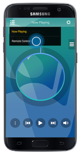 Audio Remote 12