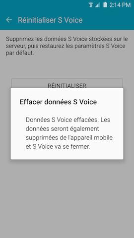 S Voice 8