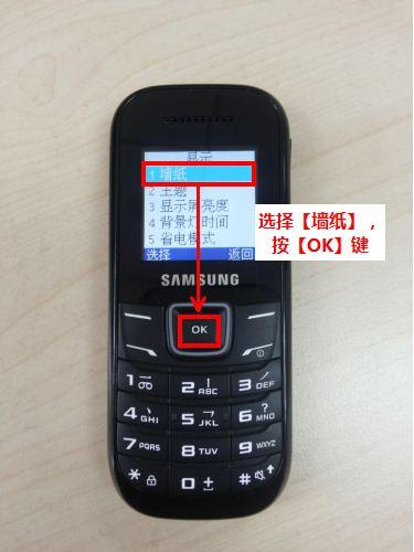 【三星手机gt-e1200m如何设置主屏墙纸?】-天极问答