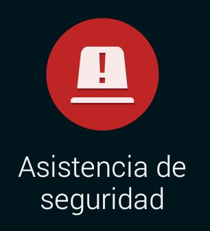 asistencia de seguridad