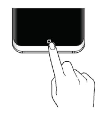 Comment afficher le bouton d'accueil et la barre de navigation