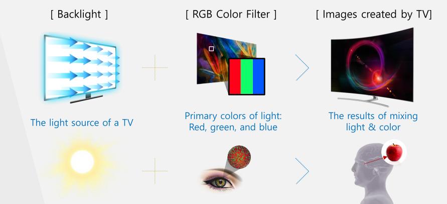 Apakah yang dimaksud dengan Q Picture pada QLED TV?