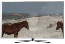 Televizoarele LED Samsung prezinta retenţii ale imaginii?